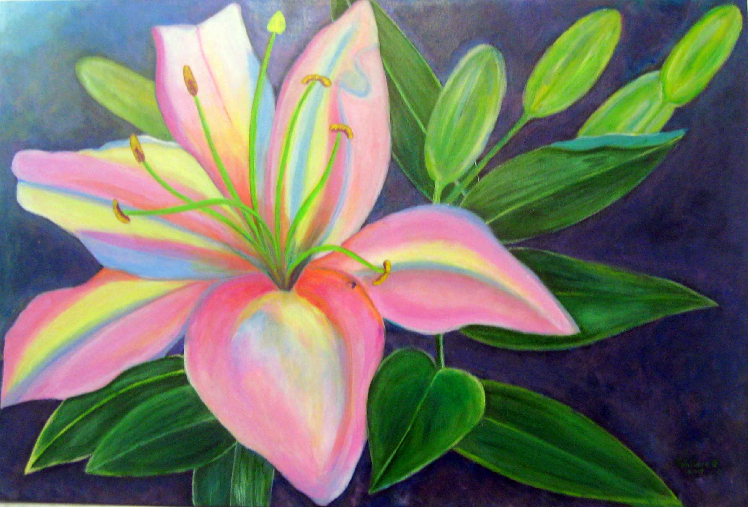 Rainbow Lily by Mrs Joy Wallace - Masterpiece Online