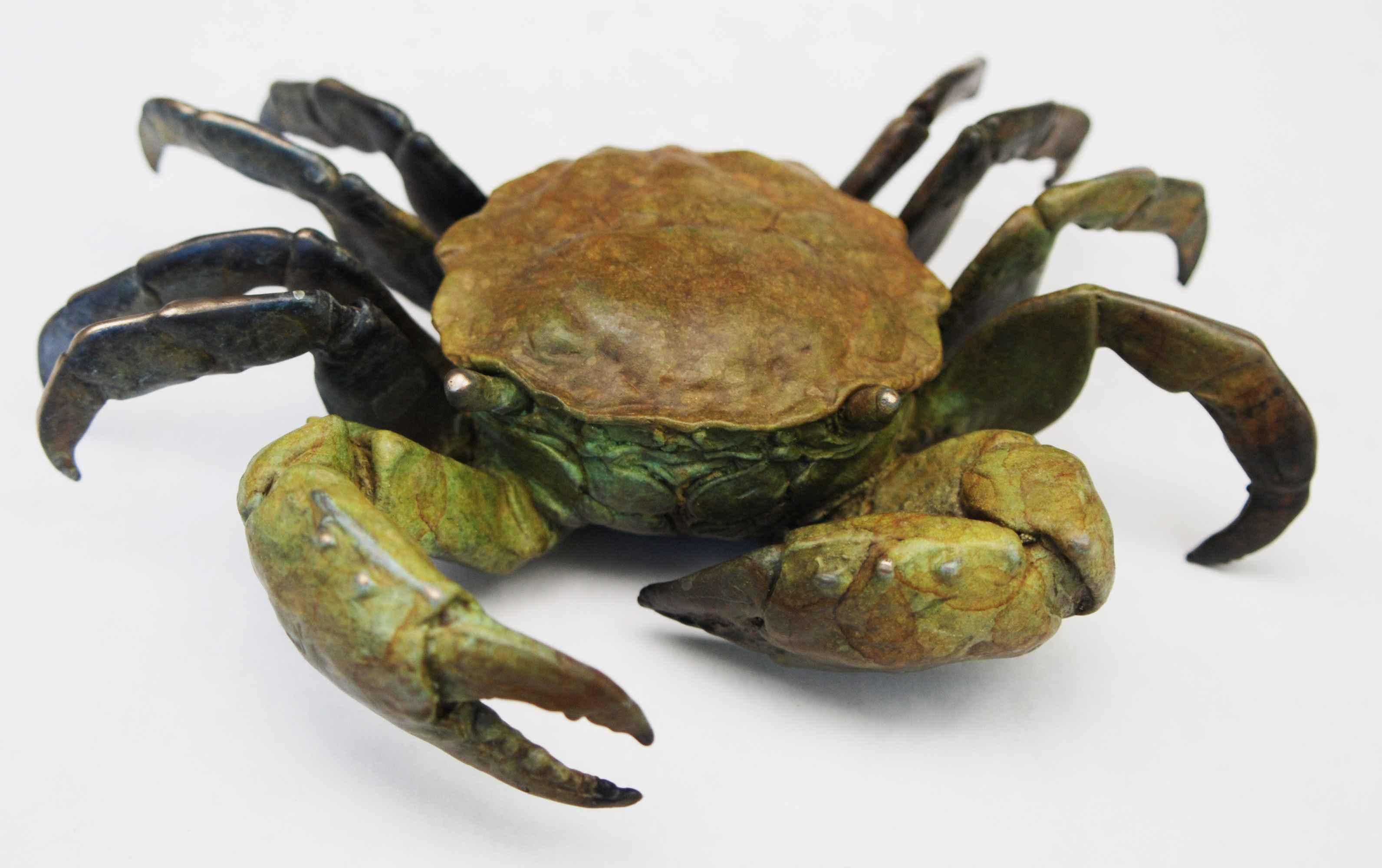 Large Brown Crab
