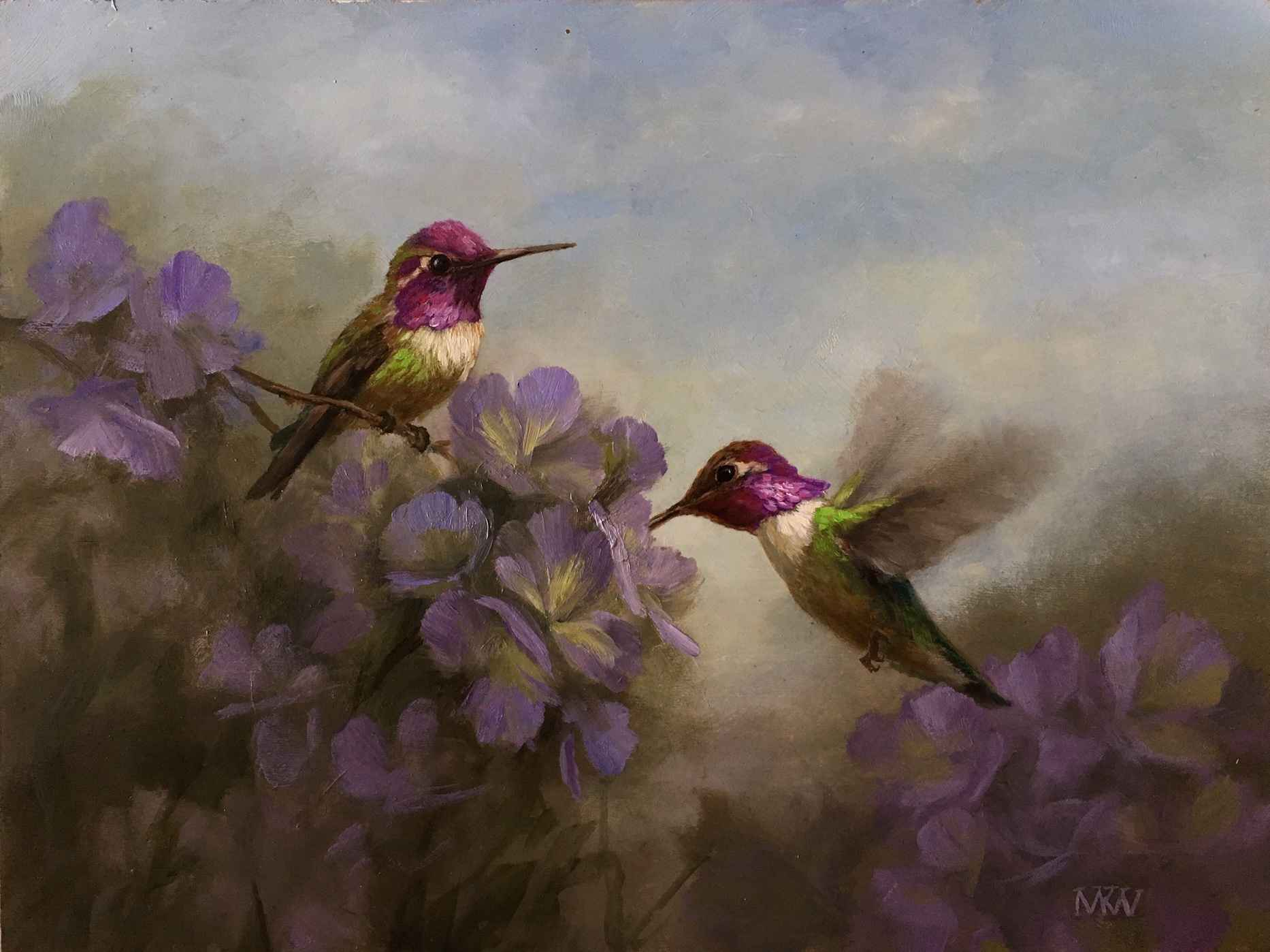 Violet Crested Hummin...