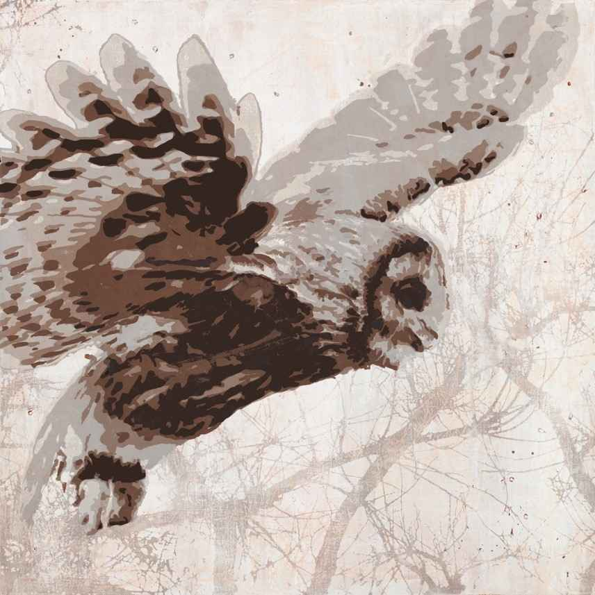 Snow Bird represented by  by  Maura Allen