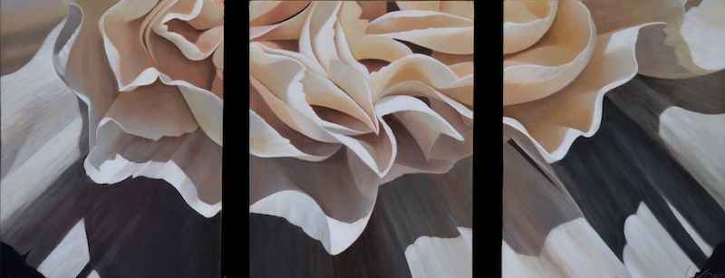 Carnation #19 Triptych by  Laurie Koss - Masterpiece Online