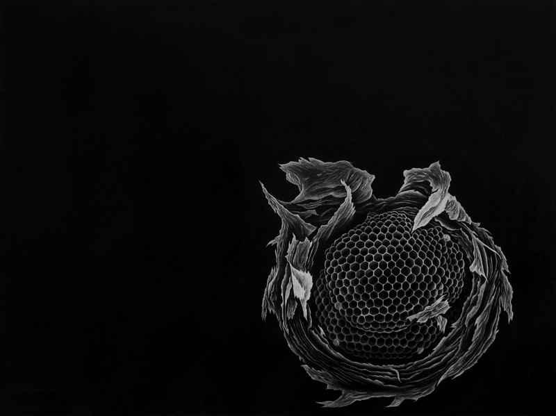 Sanctuary by  Julie Niskanen - Masterpiece Online