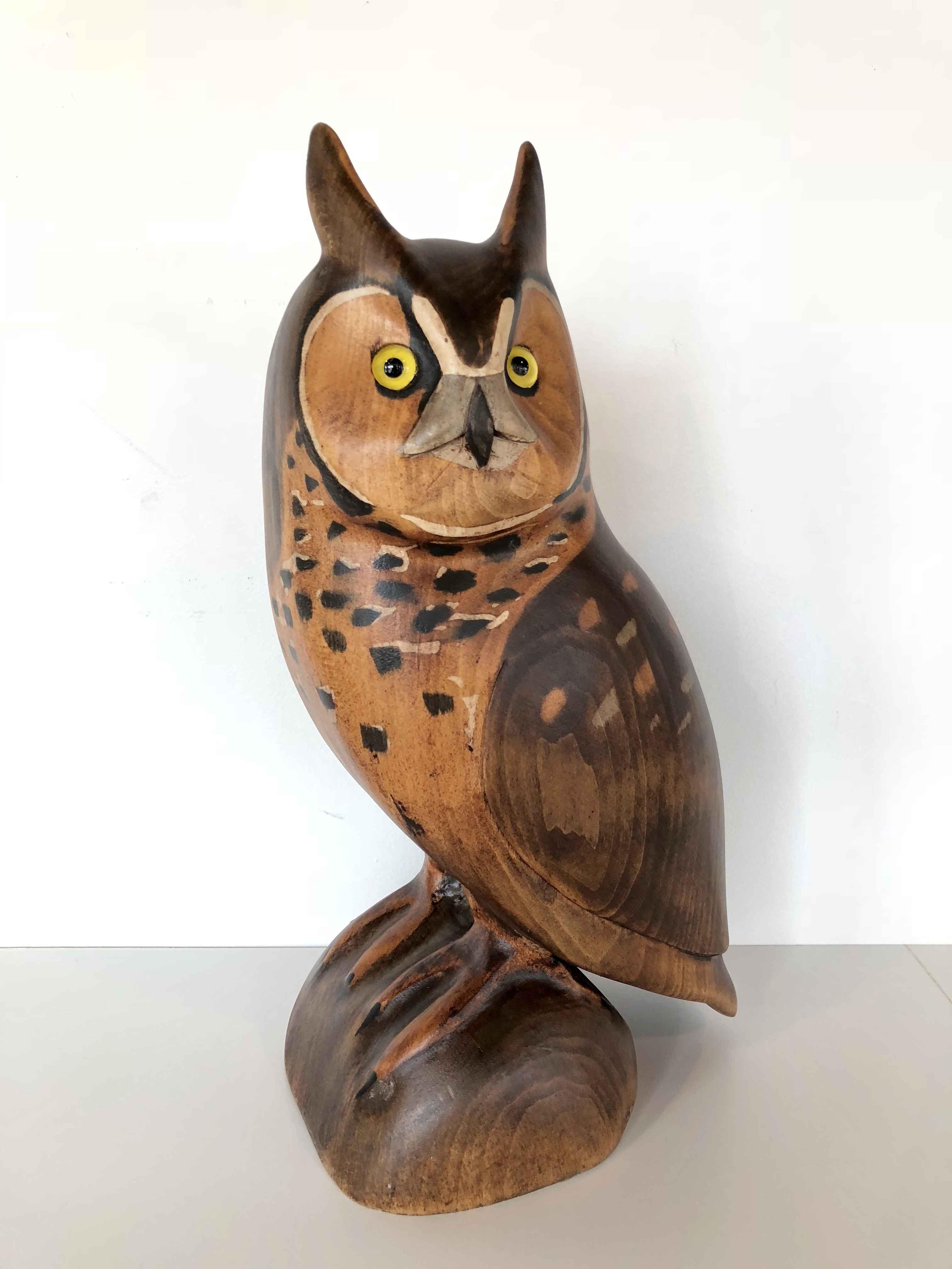 Long Earred Owl by  Jim Harkness - Masterpiece Online
