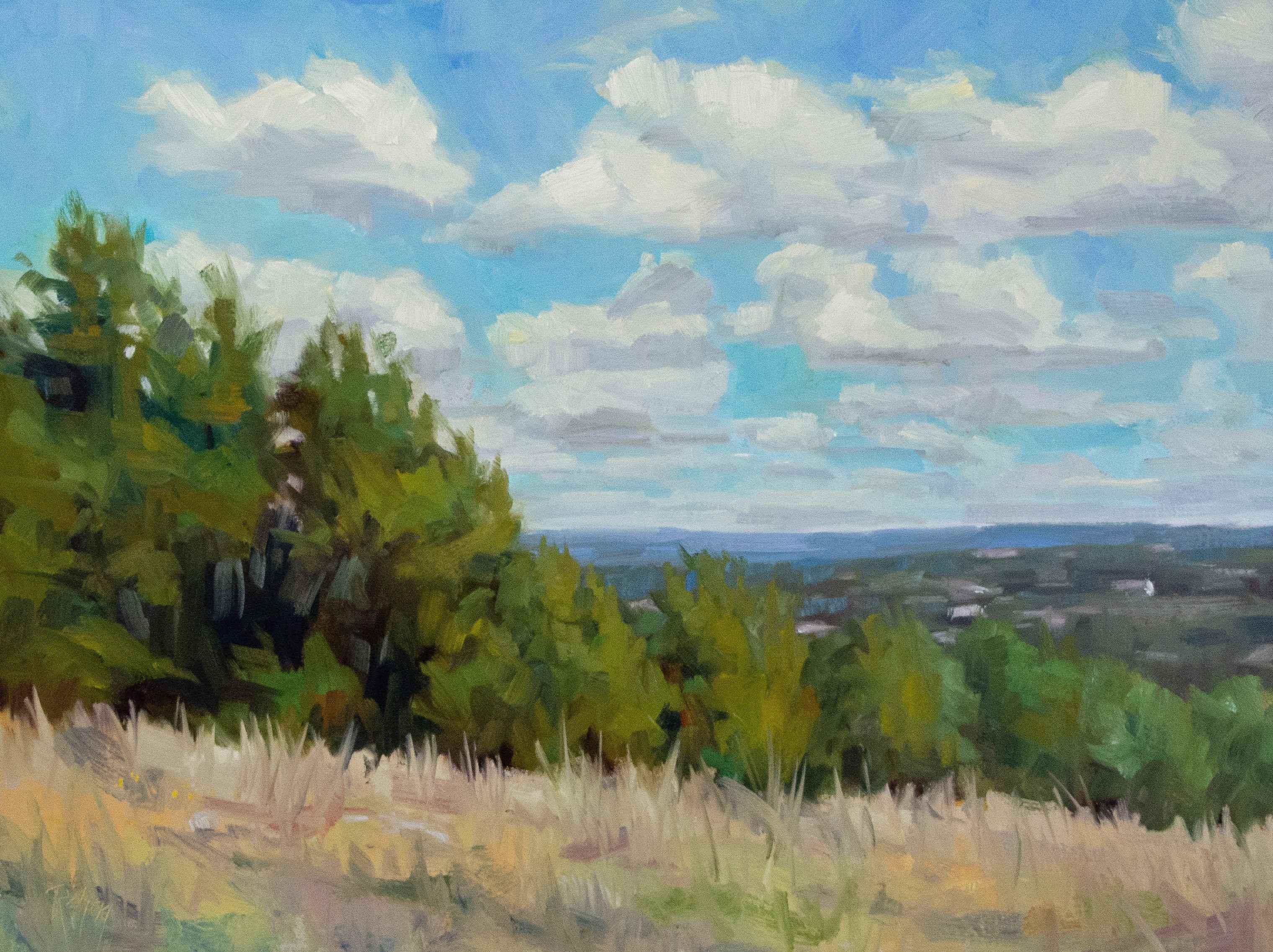 Hillside by  Robert