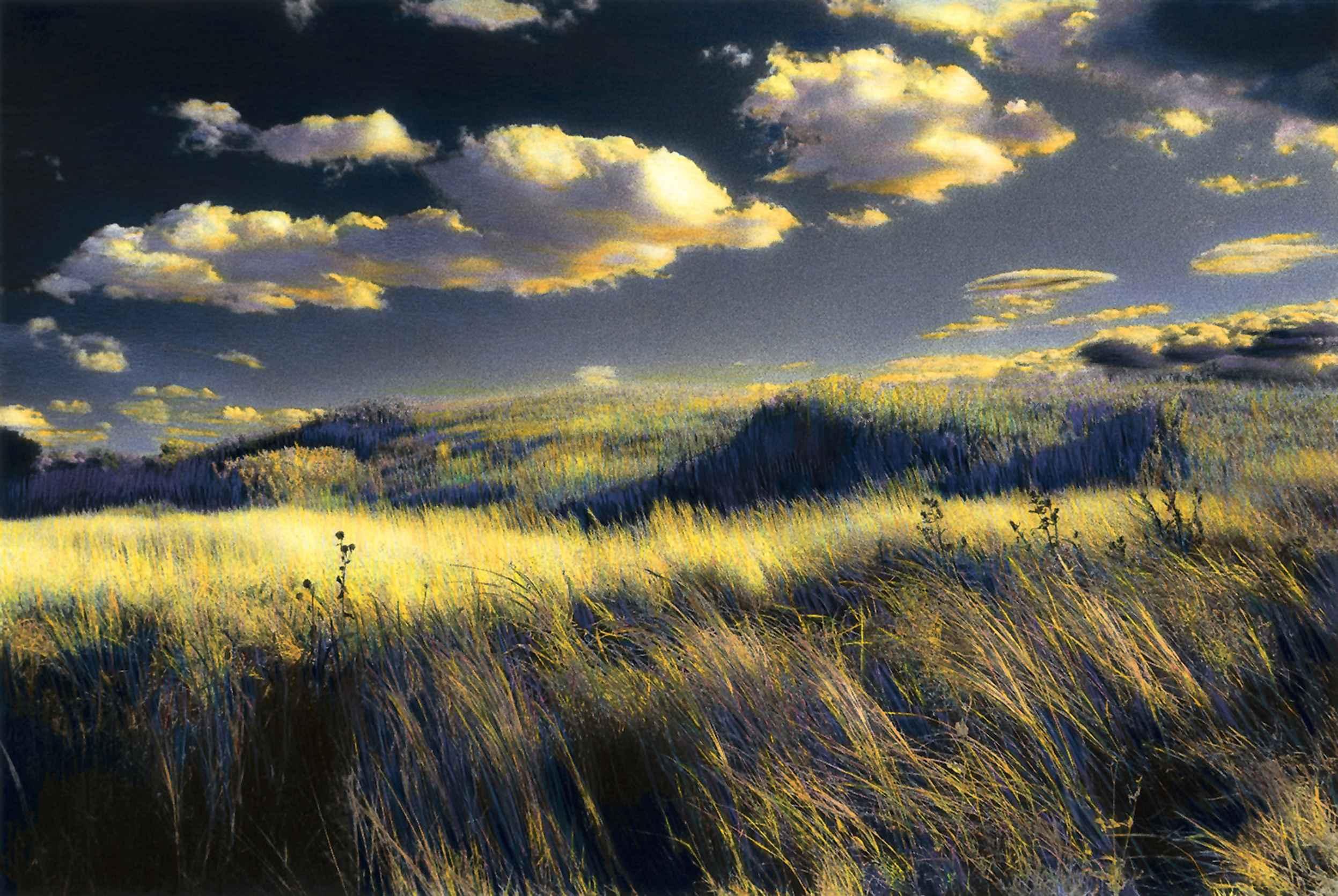 November by  Edward Sturr - Masterpiece Online