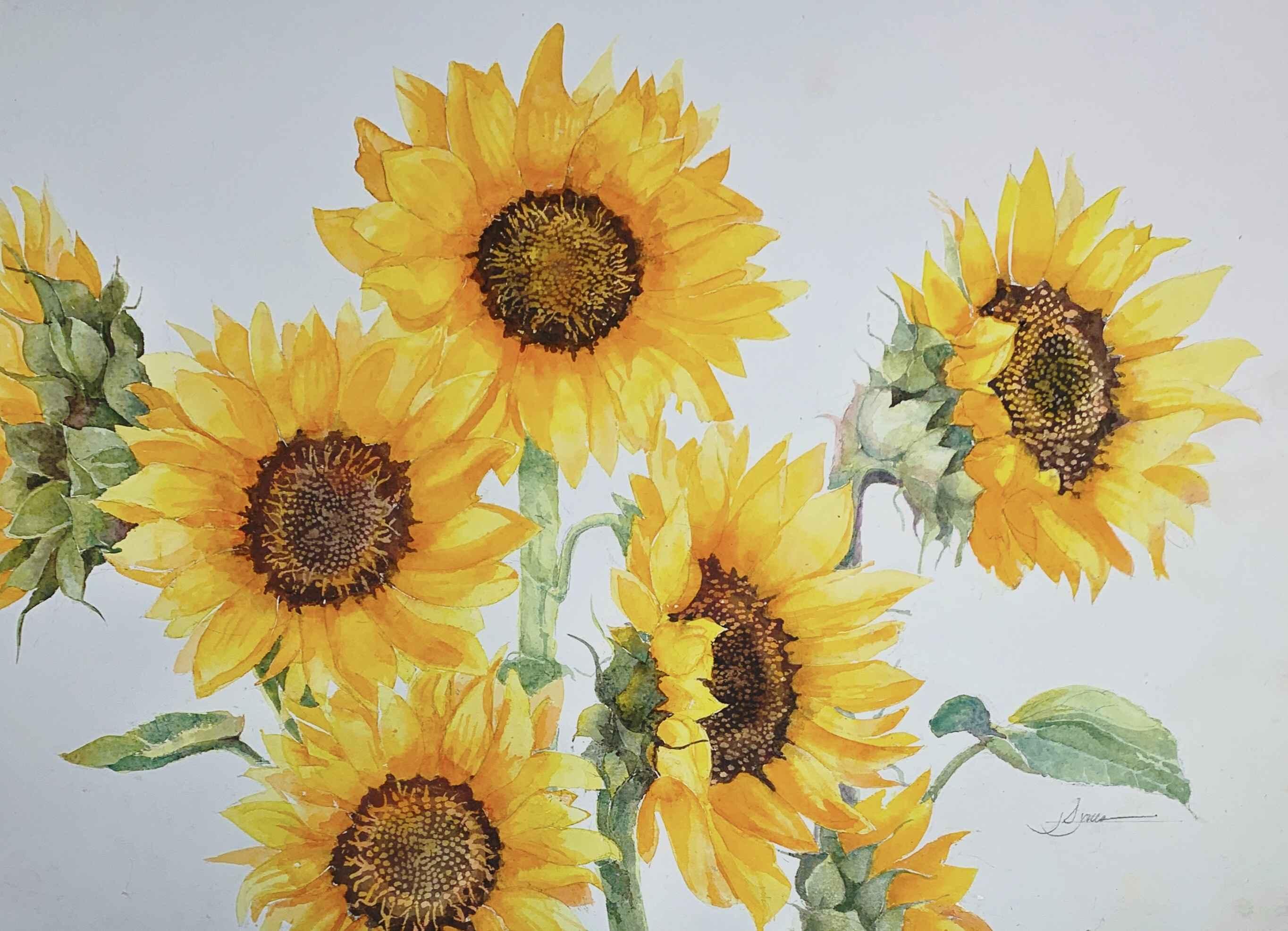 Sunflower Chorus by  James Jones - Masterpiece Online