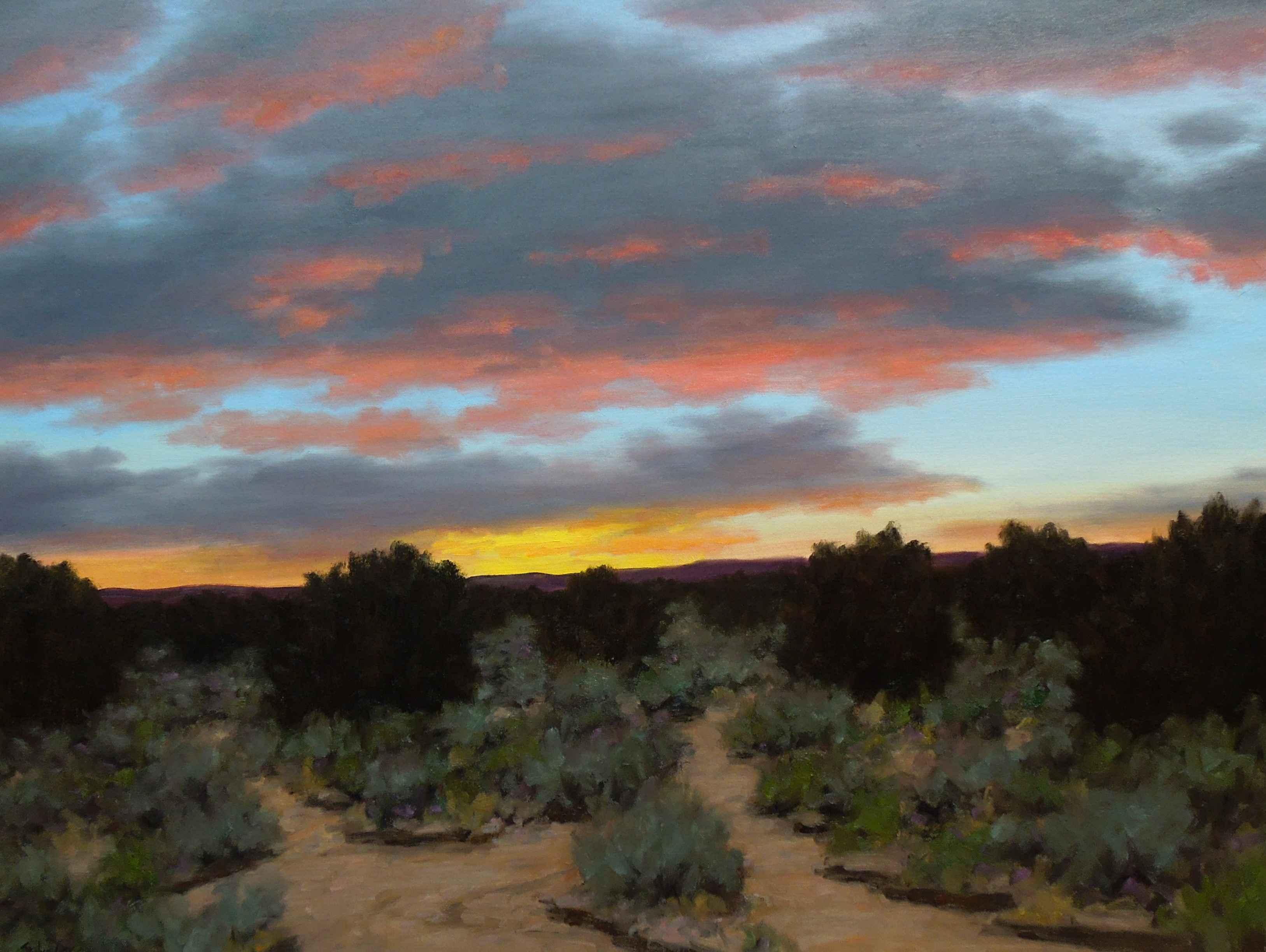 evening spectrumstephen day - sorrel sky gallery