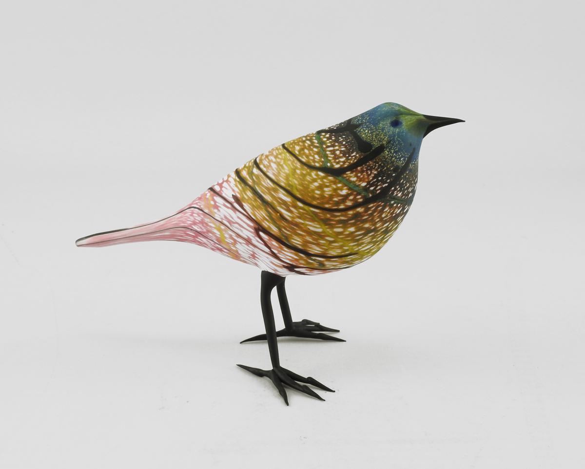Bird/Rainbow Warbler by  Shane Fero - Masterpiece Online