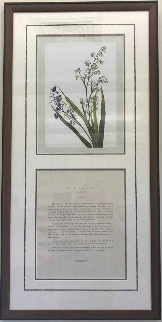 The Ukiuki by  Isabella Sinclair (1840-1890) - Masterpiece Online
