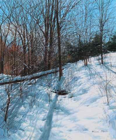 Fallen Log - Snowy Hi... by  Michael Wheeler - Masterpiece Online