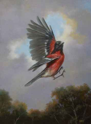 Orchard Oriole in Fli... by  Mary Kay  West  - Masterpiece Online