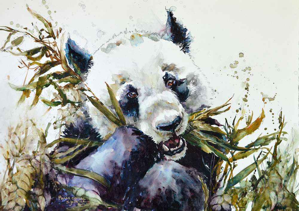 Panda Express by  Bev Jozwiak - Masterpiece Online