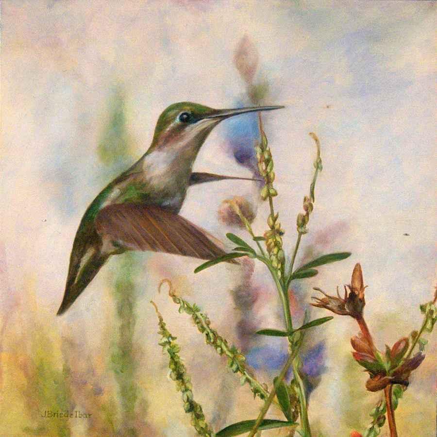 Bit of Blue Hummingbird