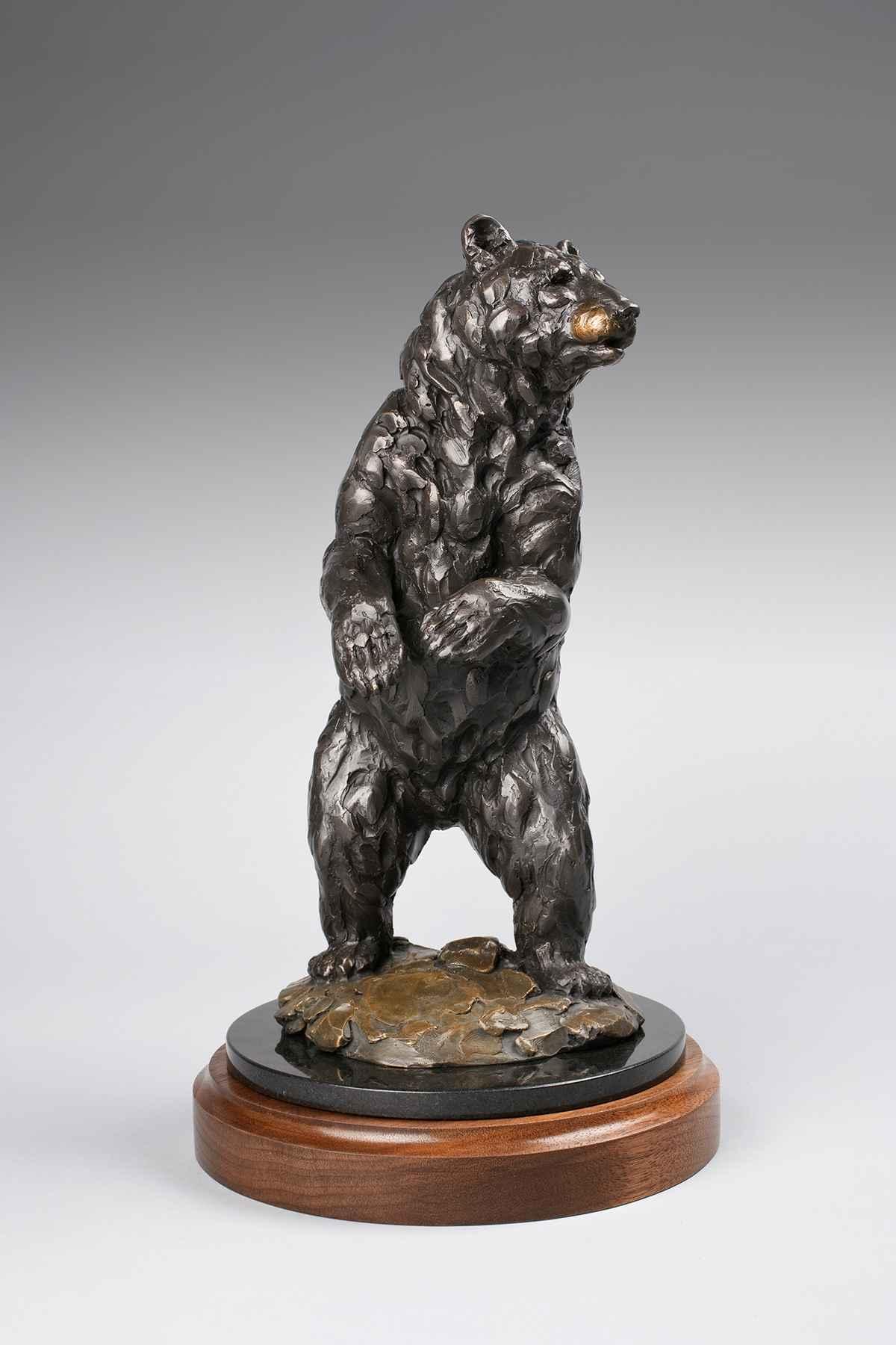 Black Bear  9/20  by  Bryce Pettit