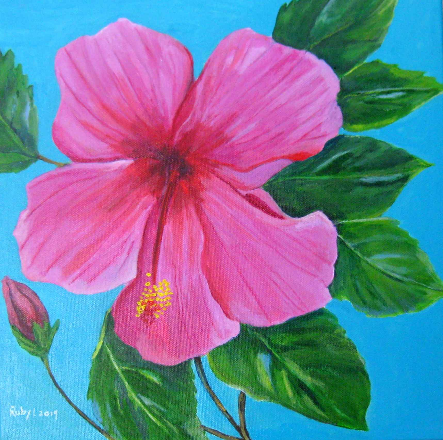Hibiscus by  Ruby Lloyd - Masterpiece Online