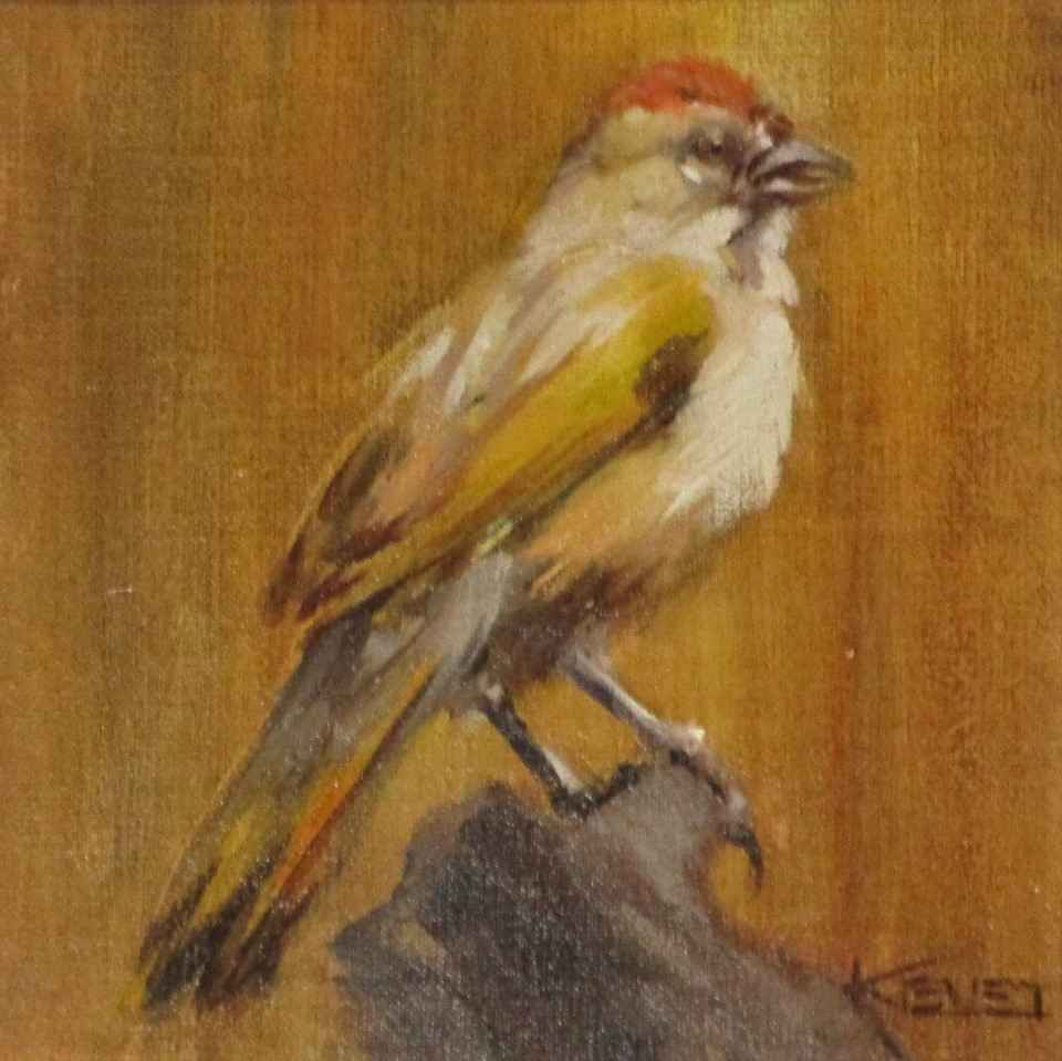 Spotted Towee by  Fran Kievet - Masterpiece Online