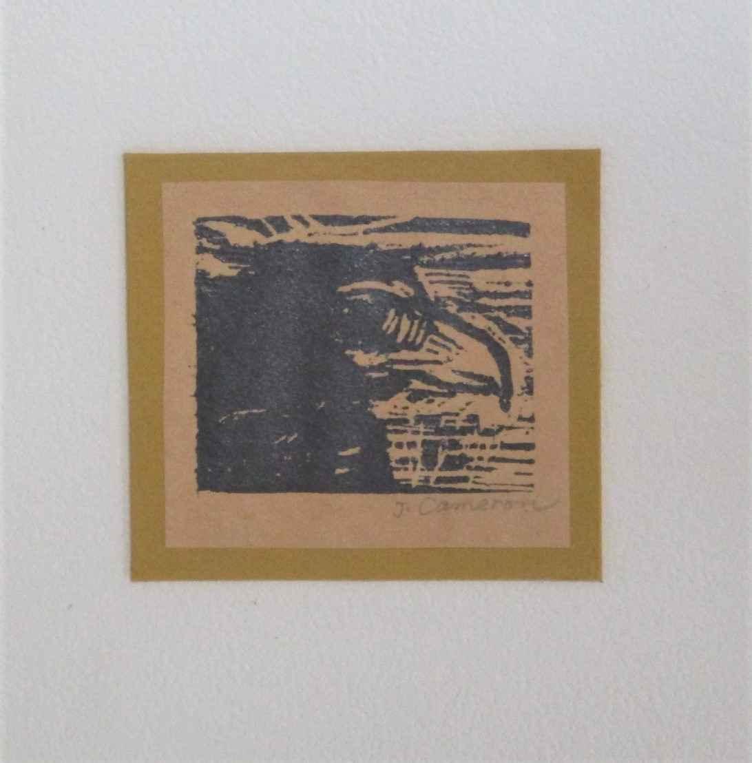 Unknown (crow) by  Jo Cameron - Masterpiece Online