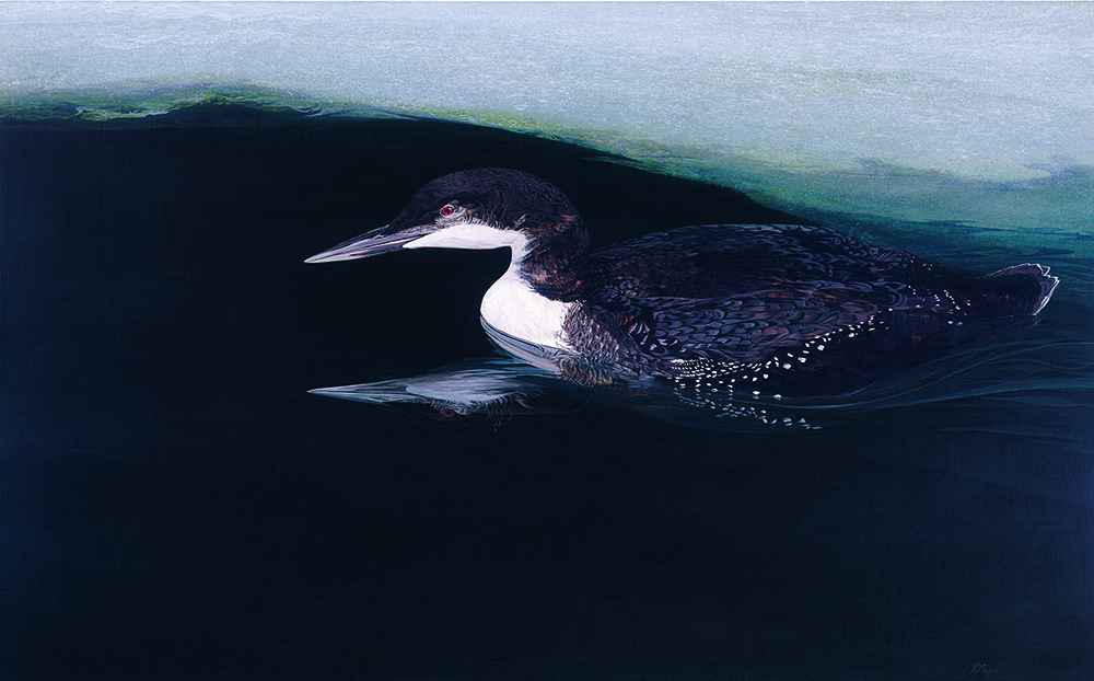 Winter Loon B by  Andrew Moore - Masterpiece Online