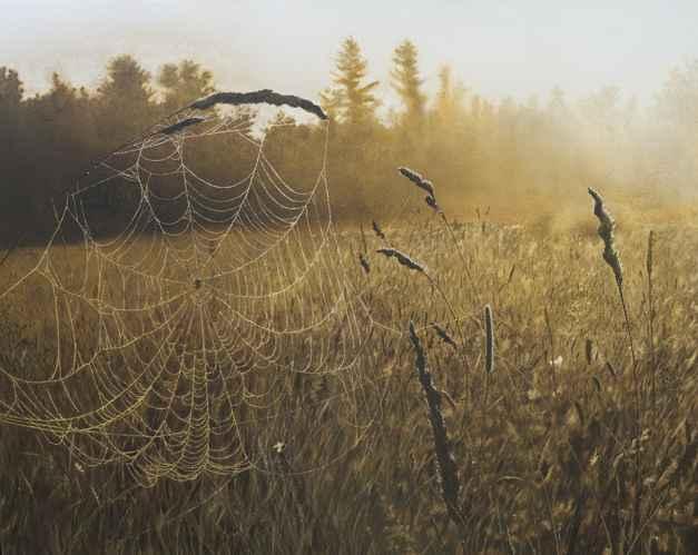 As the Sun Rises by  Gabriel Tempesta - Masterpiece Online