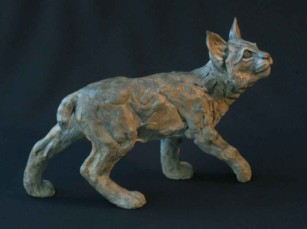 Baby Bobcat II by  Jim Eppler - Masterpiece Online