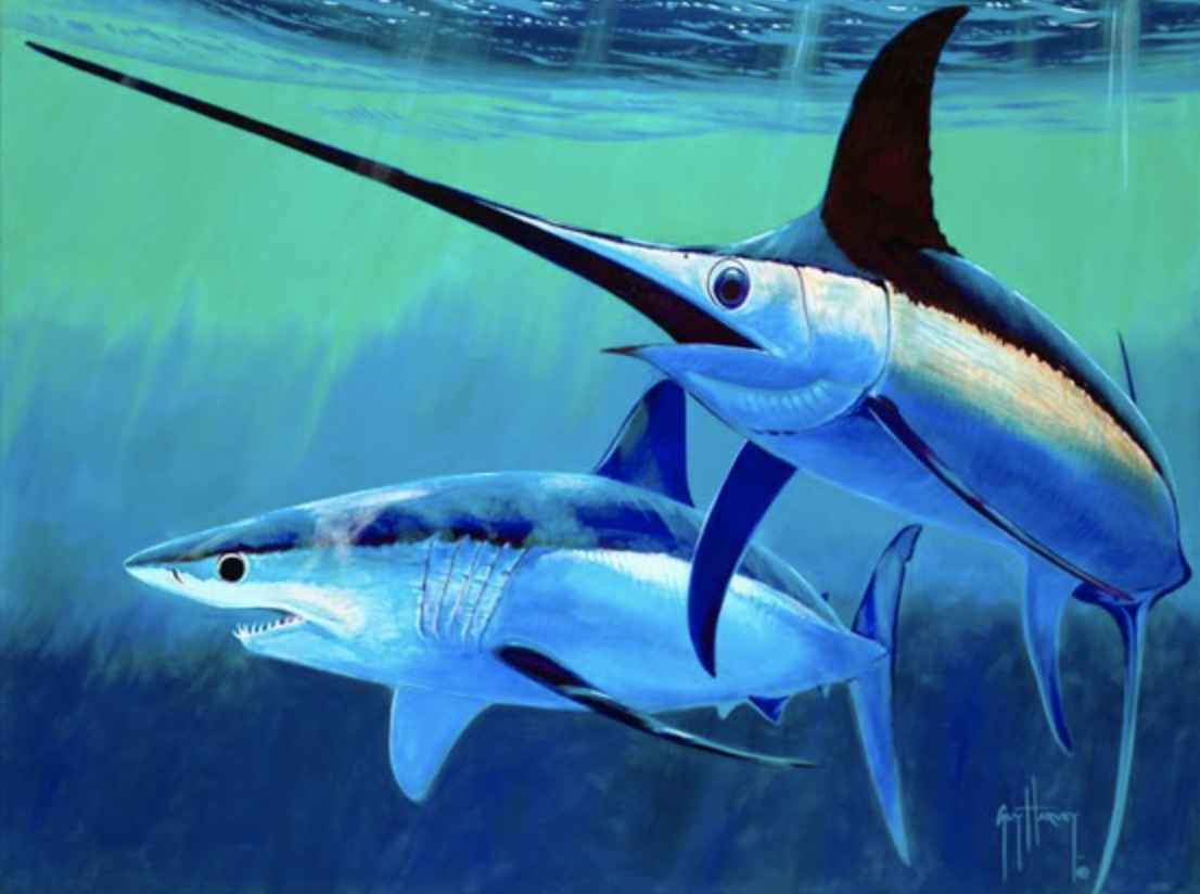 Stand Off by  Guy Harvey - Masterpiece Online