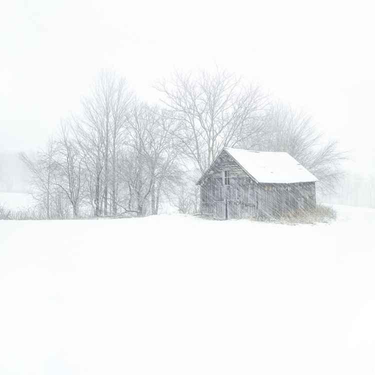 Bakersfield Barn 1 by  Jim Westphalen - Masterpiece Online