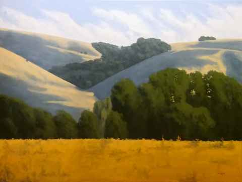 Valley Oaks  by  Donald  Craghead