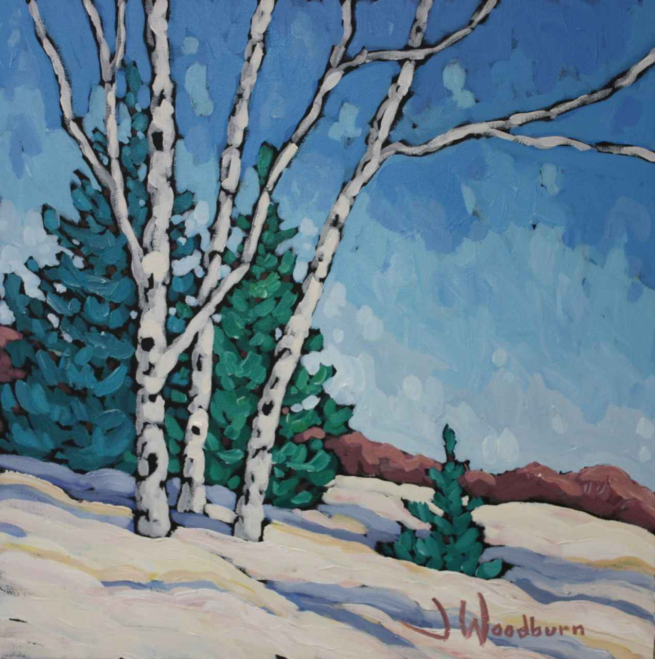 Afternoon Light On Th... by Ms Jennifer Woodburn - Masterpiece Online