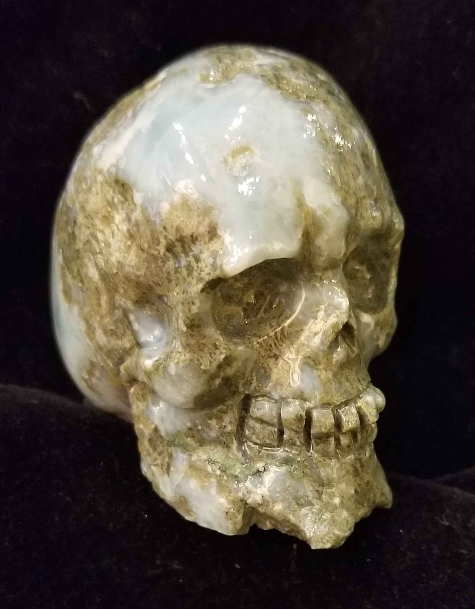 Larimar Skull by  Starborn  - Masterpiece Online