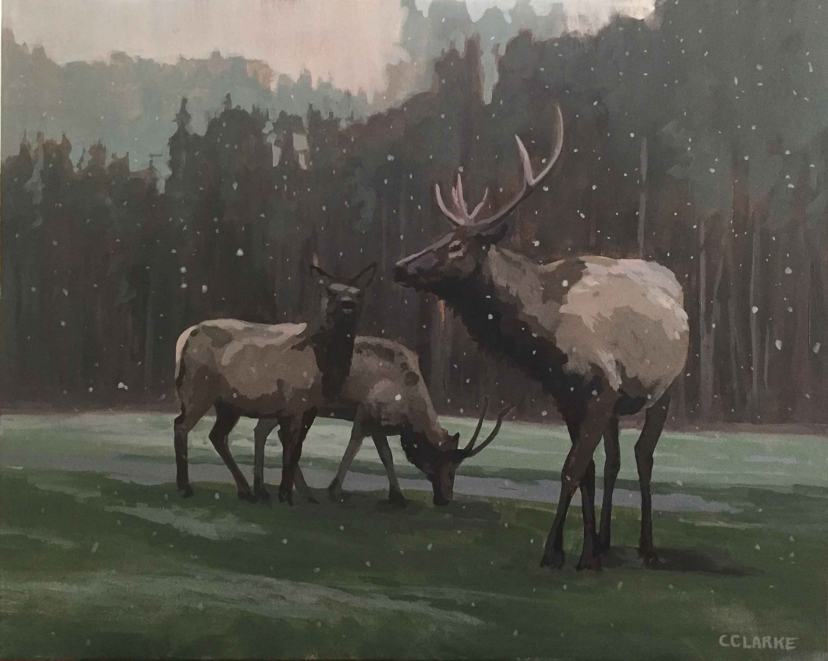 First Snow by  Christina Clarke - Masterpiece Online