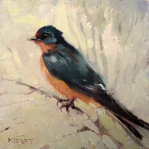 Cliff Swallow  by  Fran Kievet