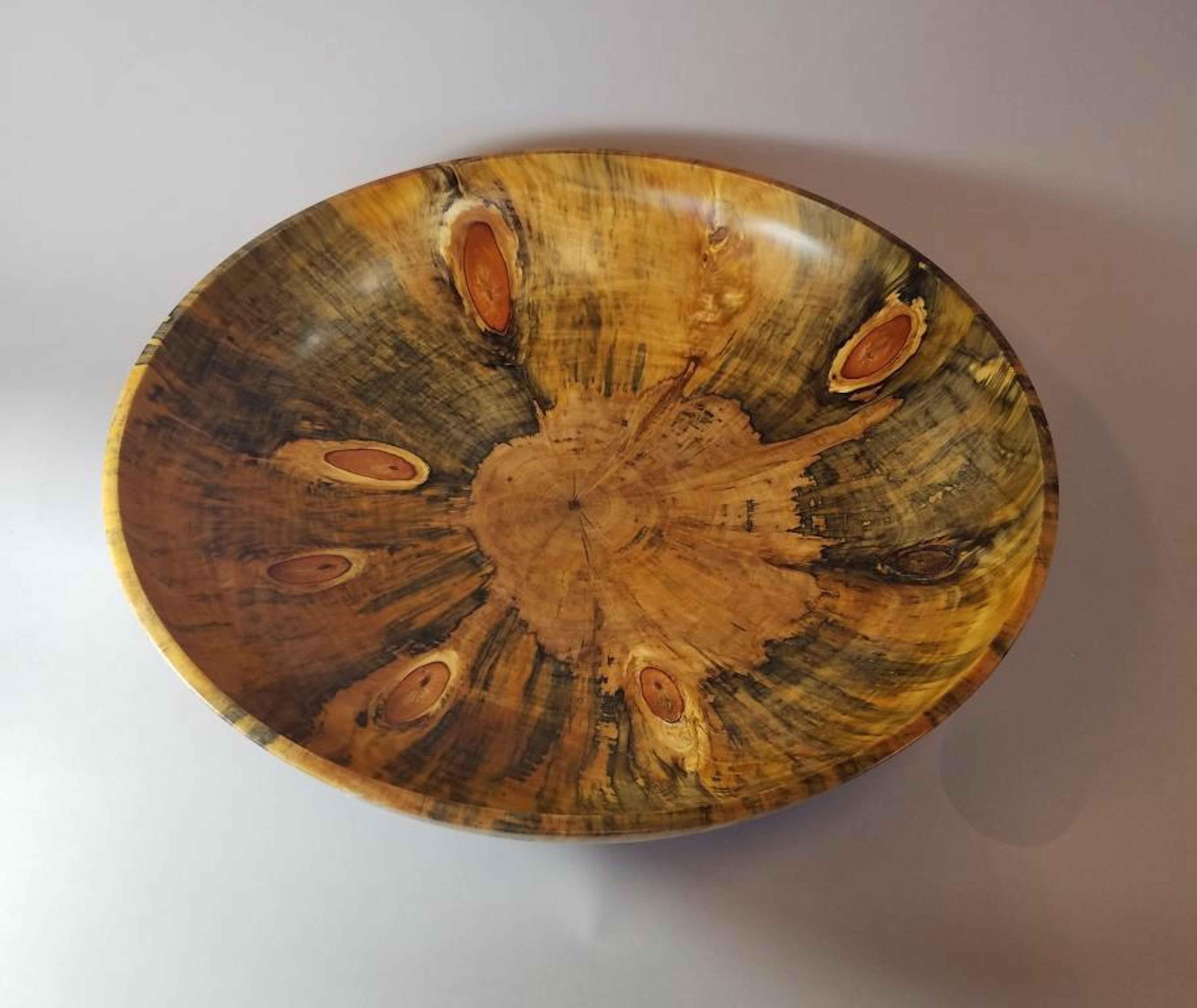 Cook Pine_2020 HWG by  Robert Woodward - Masterpiece Online