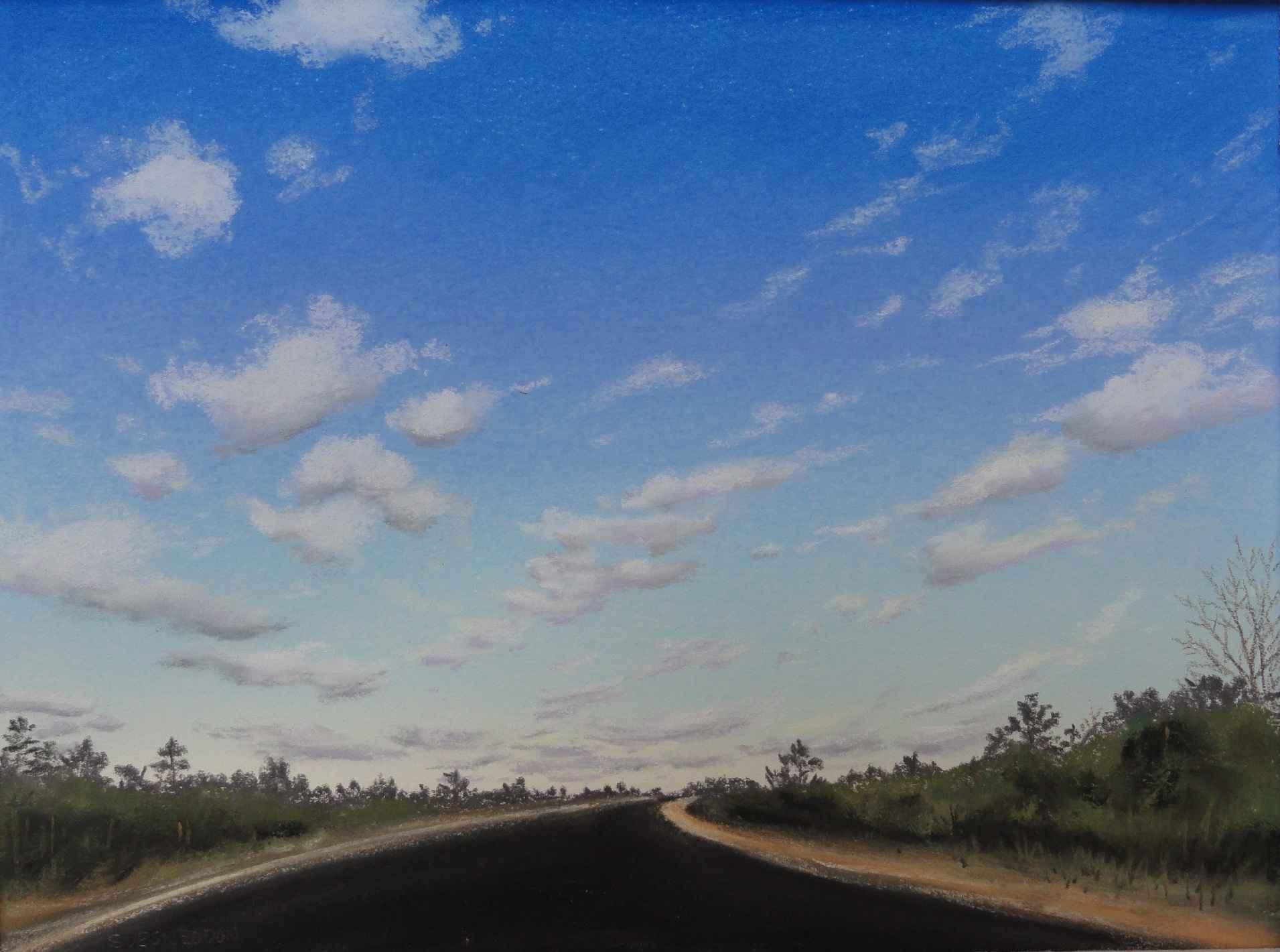 Ocean Highway Curve by  Sue Sneddon - Masterpiece Online