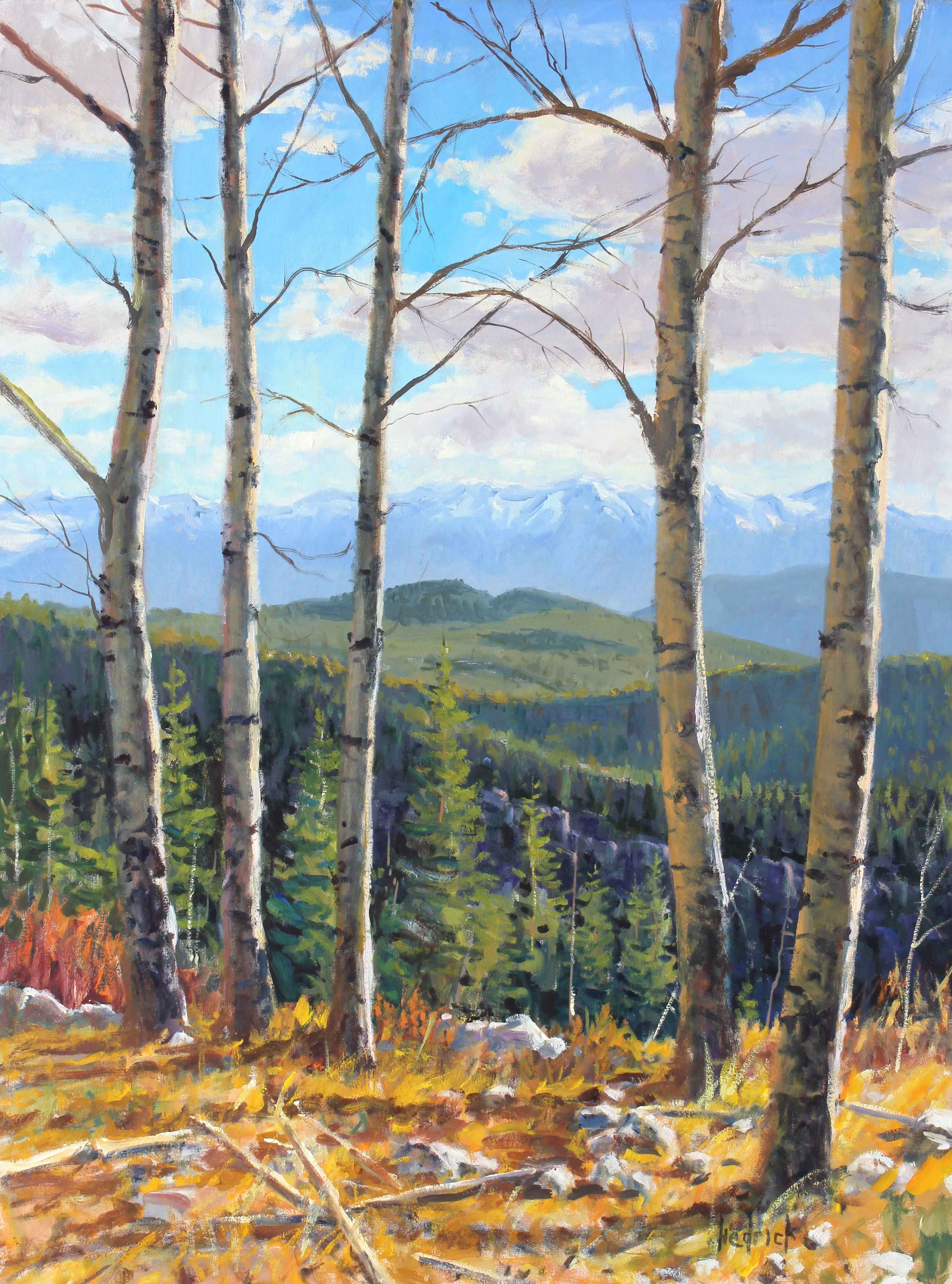 Birches with a View  by  Ron Hedrick