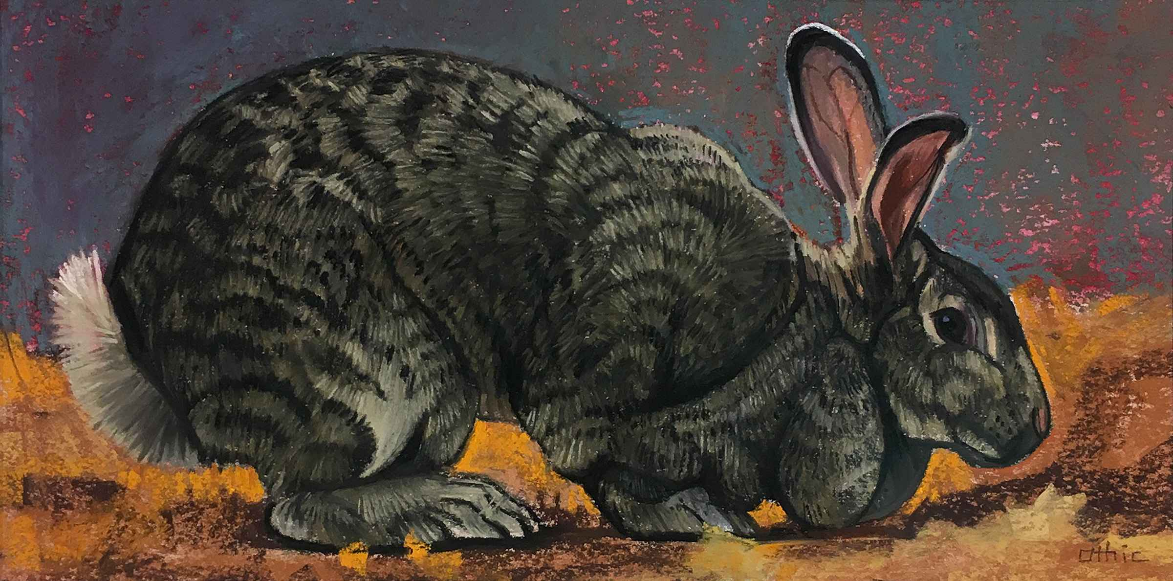 Grey Doe Rabbit represented by  by  Nora Othic