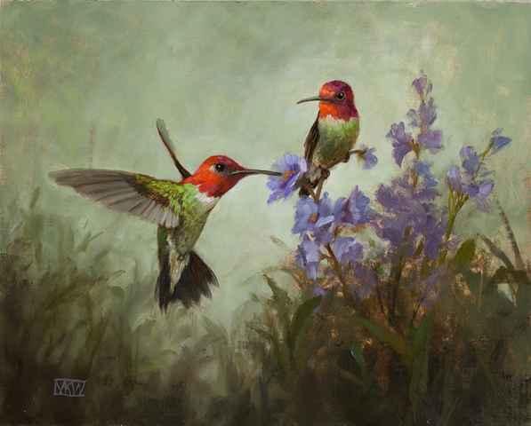 Anna's Hummingbirds  by  Mary Kay  West