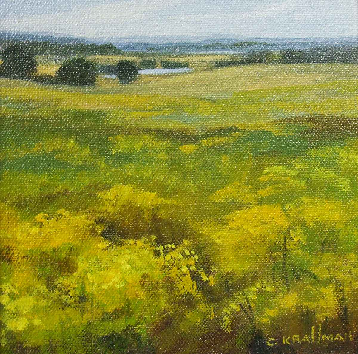Broomweed by  Cally Krallman - Masterpiece Online