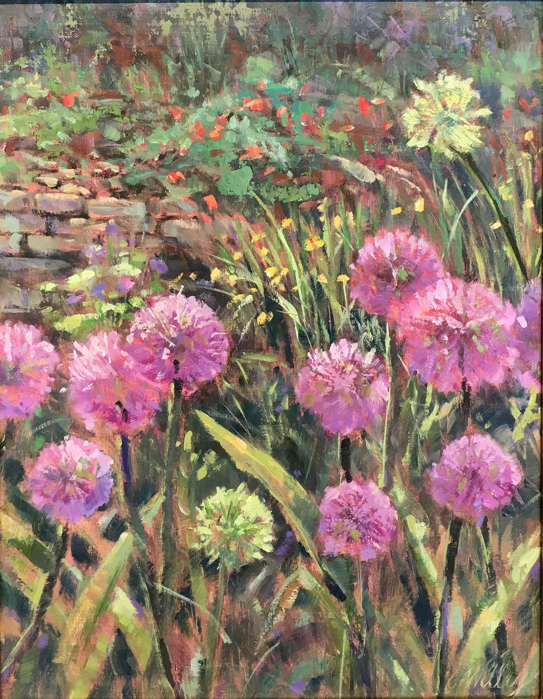 Allium First Bloom by  Chris Willey - Masterpiece Online