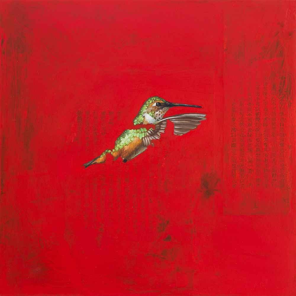 Allen's Hummingbird  by  Byron Gin