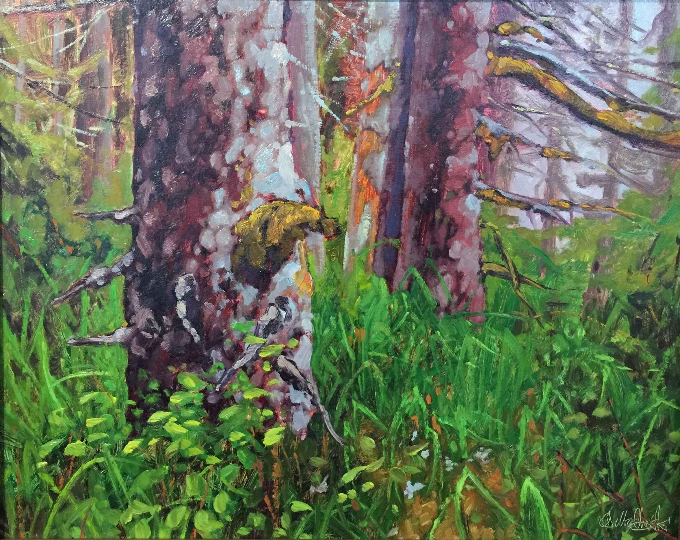 Primival Forest by  Dominik Modlinski - Masterpiece Online