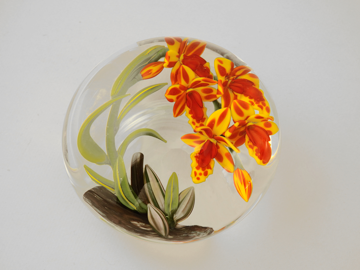 Paperweight/Orchid by  Colin Richardson - Masterpiece Online
