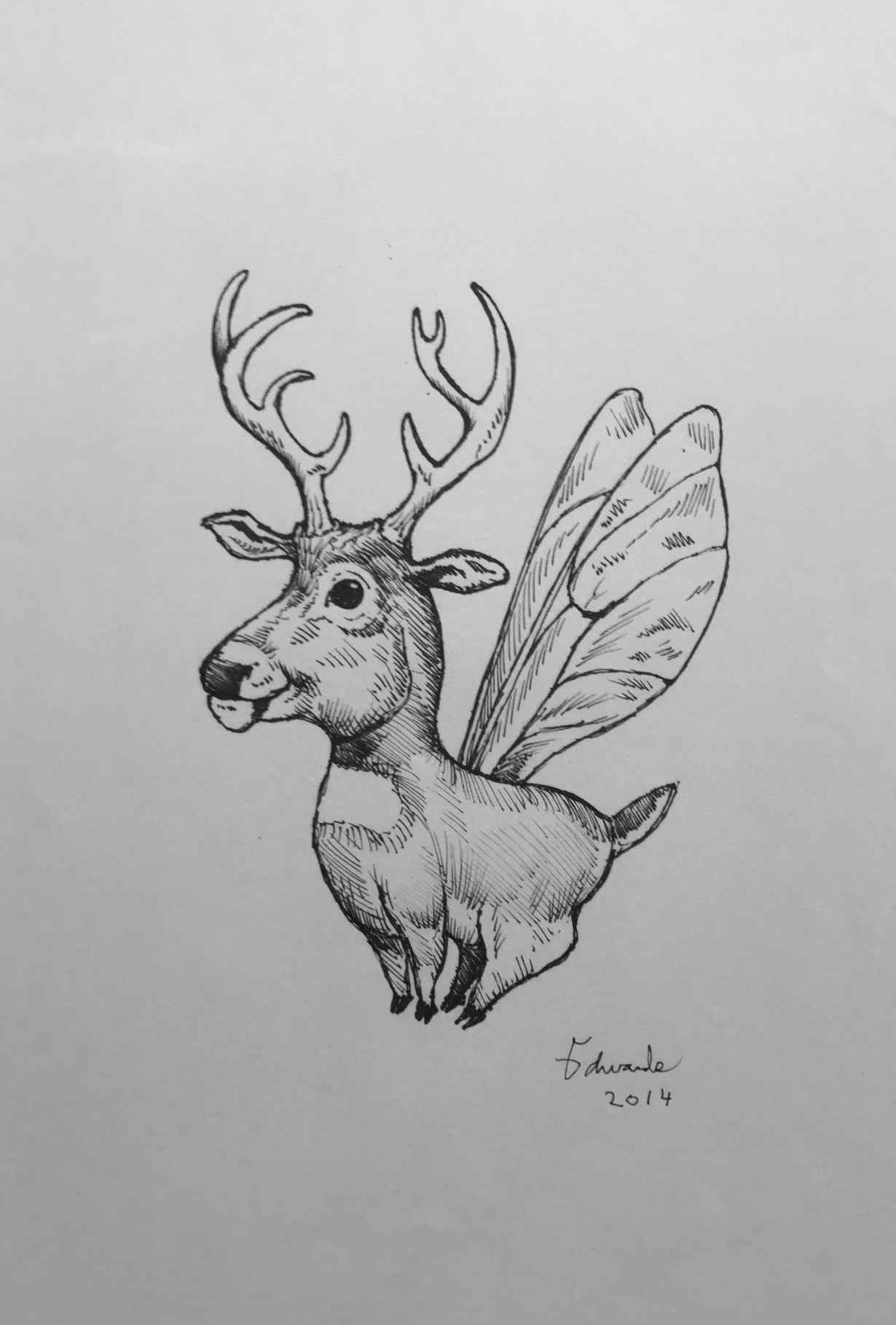 Deer Fly  by  Wallace Edwards