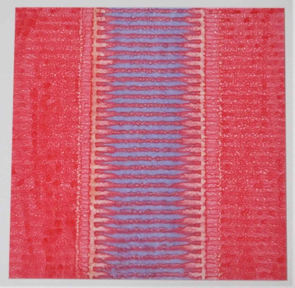 VB4 by  John Redman - Masterpiece Online