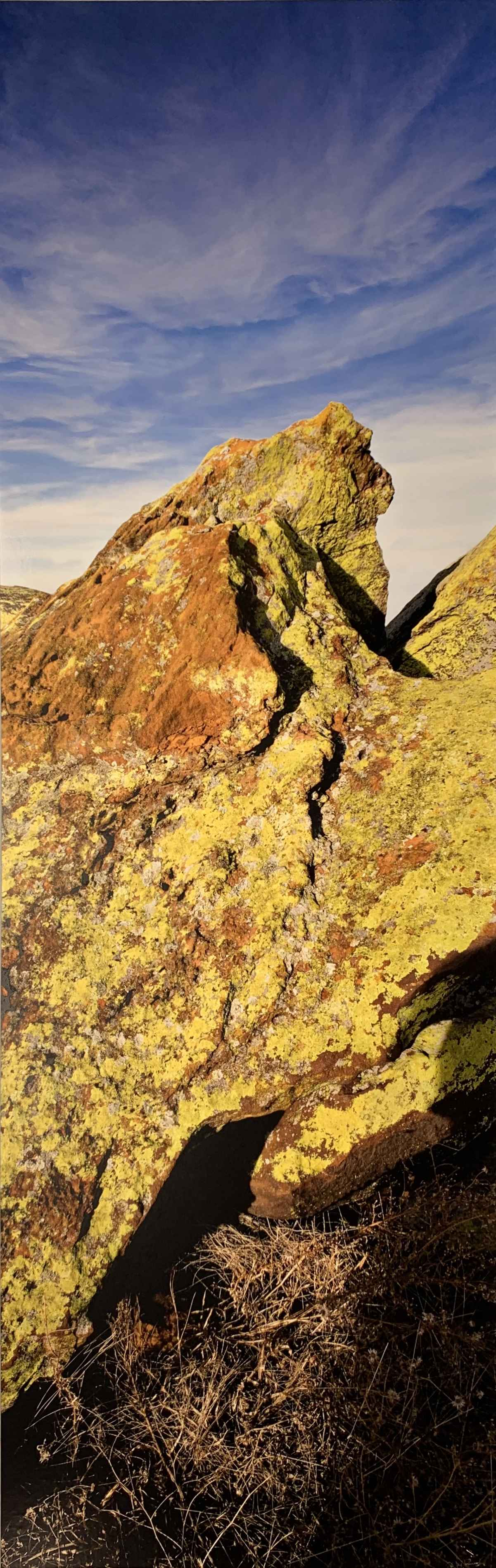 Lichen, Stone, Sky, O... by  George Jerkovich - Masterpiece Online