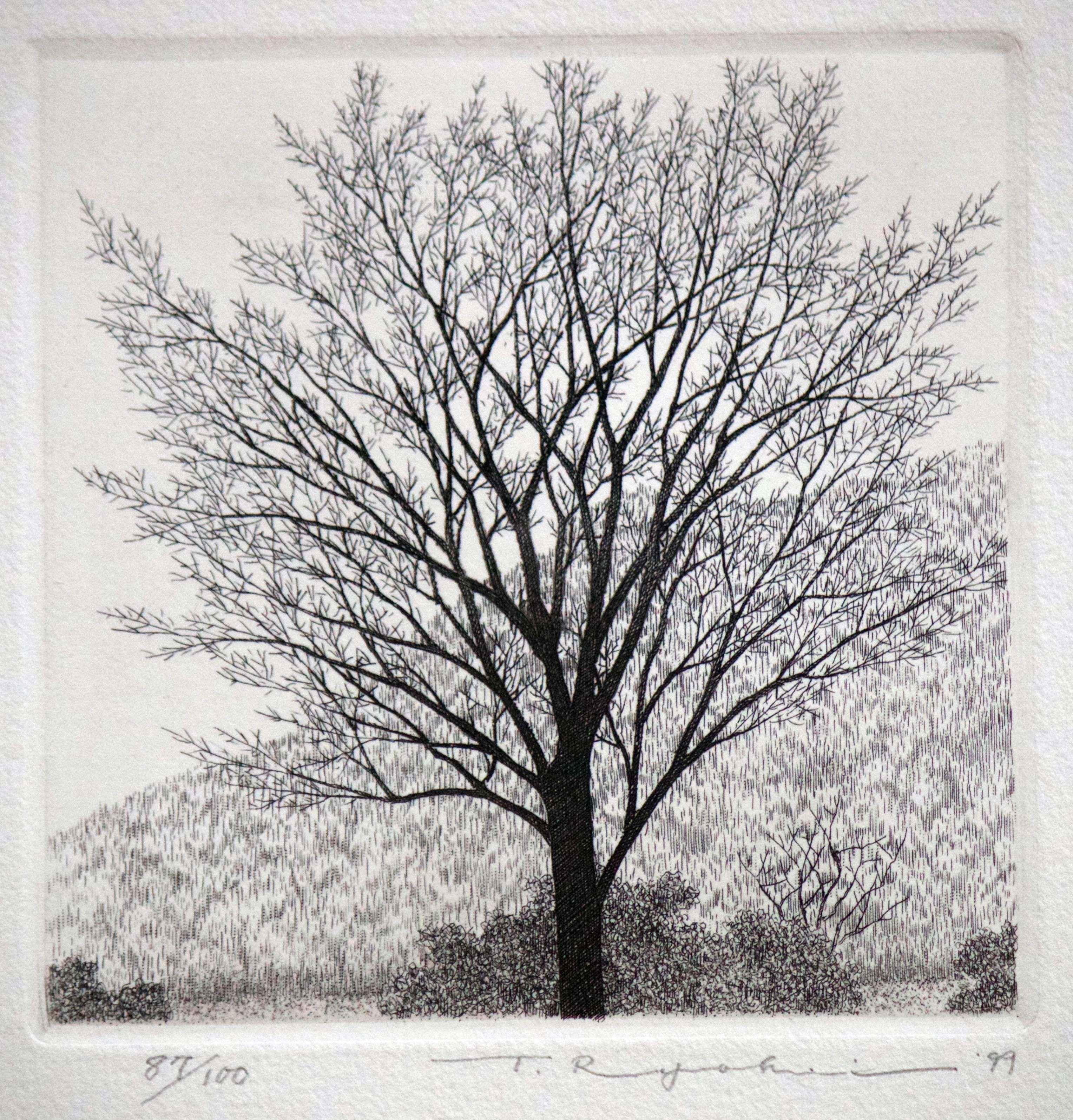 Tree in Late Autumn by  Ryohei Tanaka - Masterpiece Online