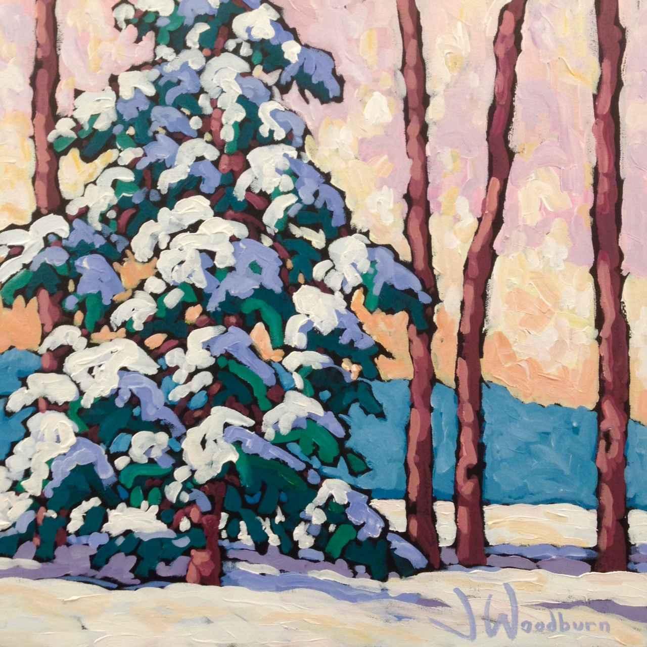 Winter Fir II by Ms Jennifer Woodburn - Masterpiece Online