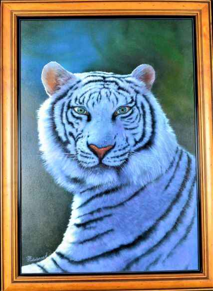 Human Eyes in Tiger by  Jim Warren - Masterpiece Online