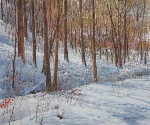 Open Woods - Light Sn...  by  Michael Wheeler