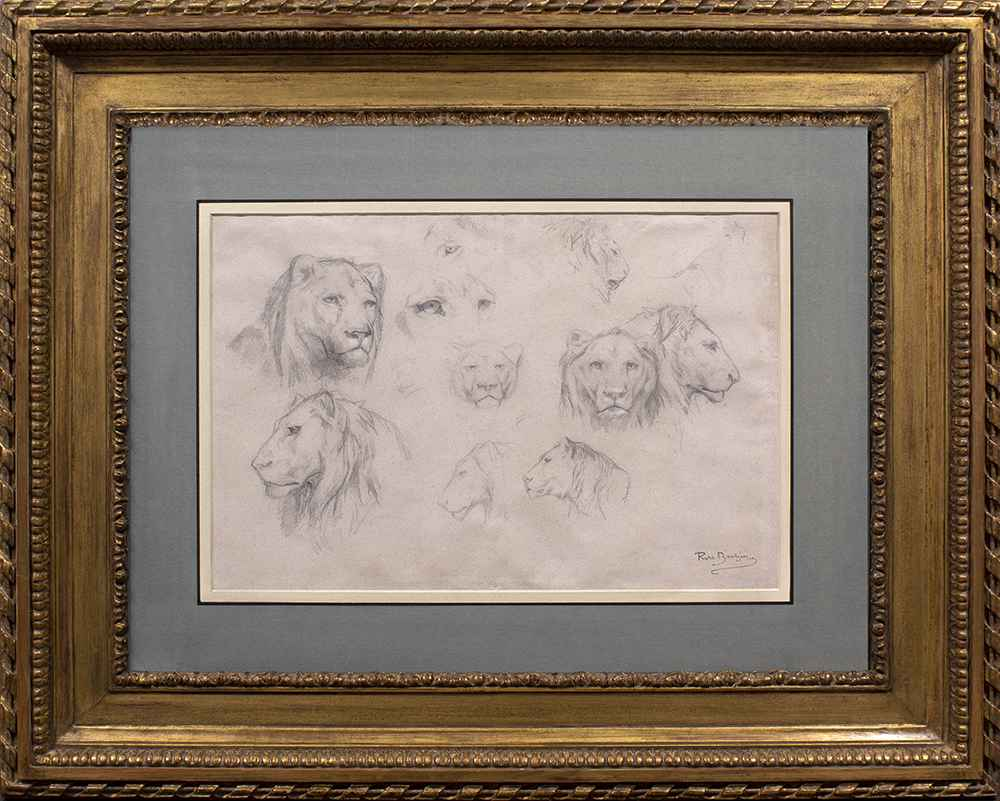 Study of Lions and Lionesses by Rosa Bonheur
