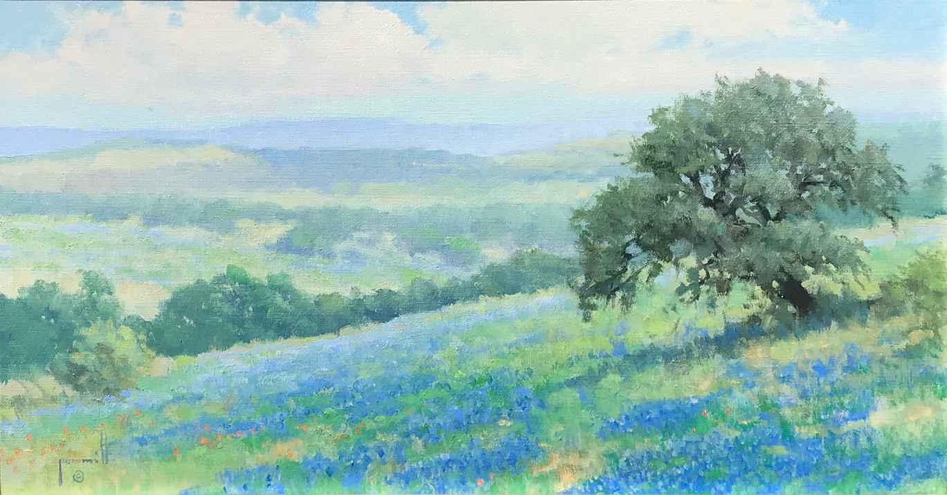 Travis County Hills by Mr. & Mrs. Robert Pummill - Masterpiece Online